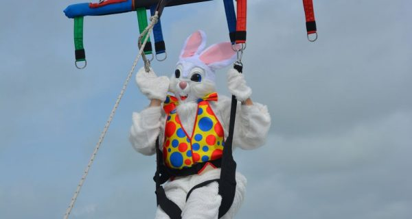 Easter Bunnies - Teaser Image