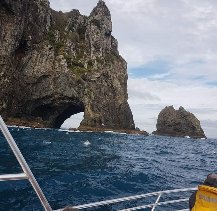 """2-hour """"Whole of Bay of Islands"""" Express Tour - Slide"""